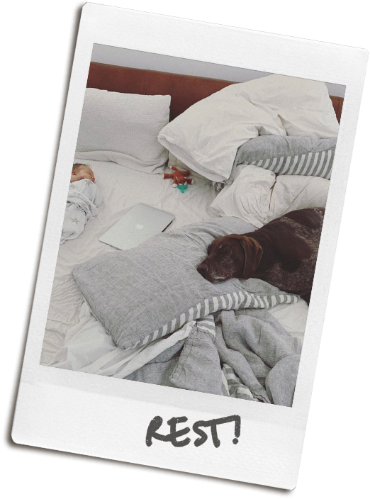 """Poloroid photo of Simi's dog lying on an unmade bed, with the hand-written caption """"REST"""""""